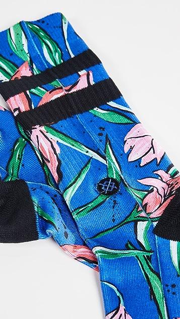STANCE Waipoua Socks