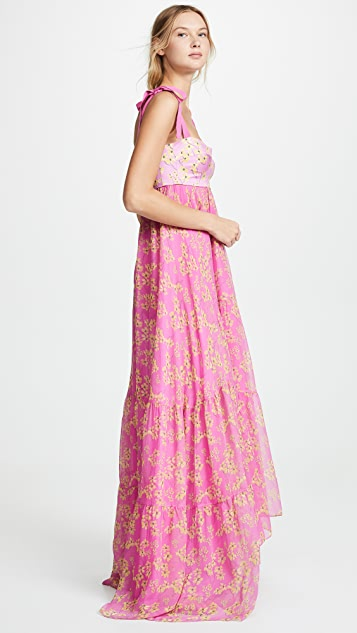Silvia Tcherassi Dancing Floral Dress