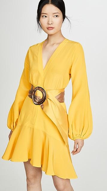 Silvia Tcherassi Filis 连衣裙和腰带