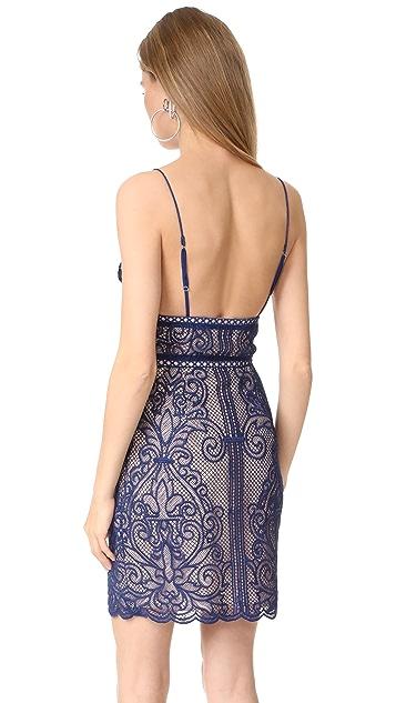 STYLESTALKER Stella Mini Dress