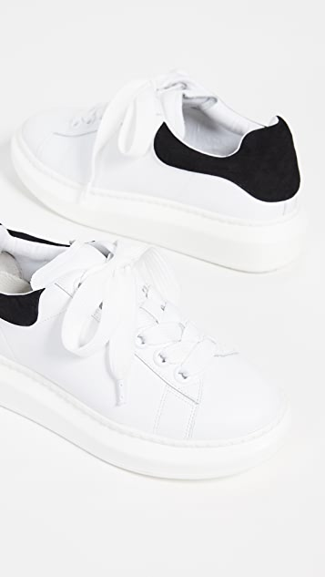 Steven Glazed Lace Up Sneakers