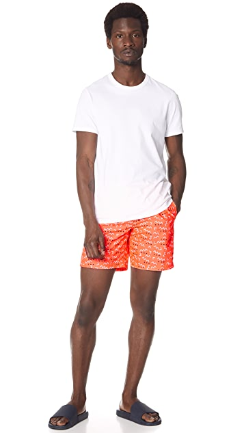 SUNDEK Elements Print Board Shorts