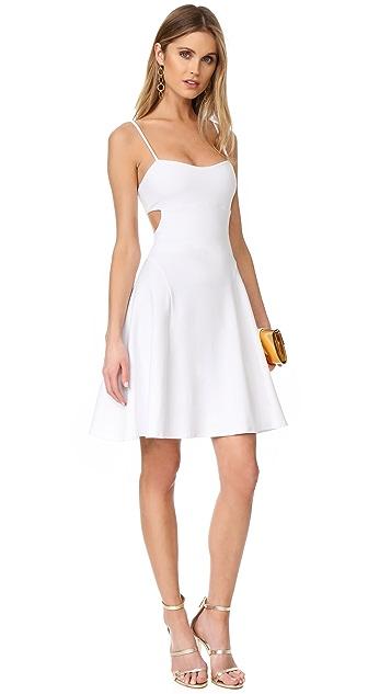 Susana Monaco Jane Dress