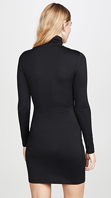 Susana Monaco Long Sleeve Turtleneck Mini Dress