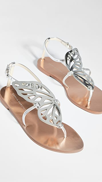 Sophia Webster 蝴蝶平底凉鞋