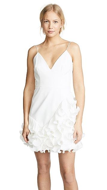 Woman Mini Dress