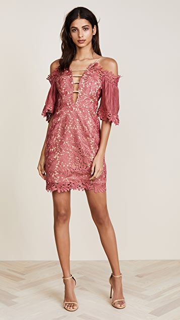 La Maison Talulah Fresco Off Shoulder Lace Mini Dress