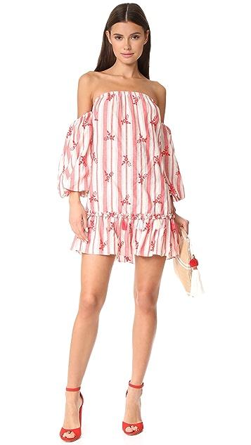 MISA Acel Dress