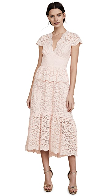 Temperley London Lunar Lace V Neck Dress