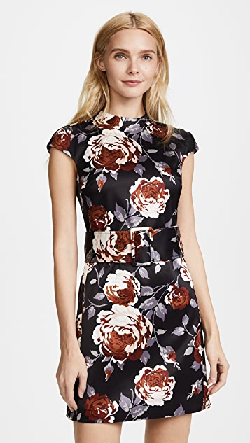Theory Mod Belted Dress
