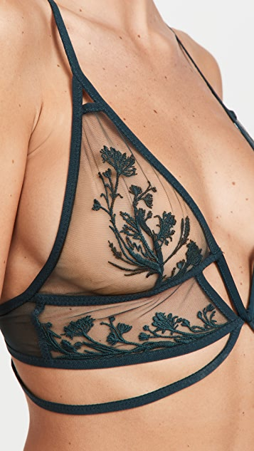 Thistle and Spire Mulberry Bralette
