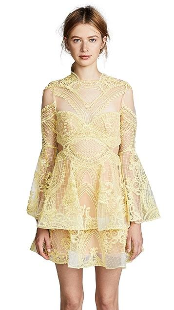 THURLEY Chameleon Mini Dress