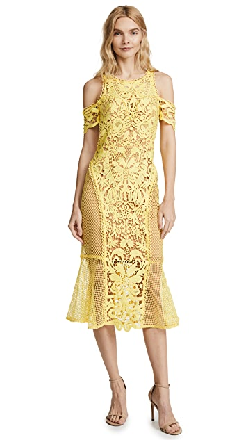 THURLEY Enchanted Garden Midi Dress