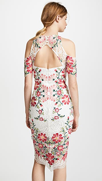 THURLEY Flower Bomb Lace Midi Dress