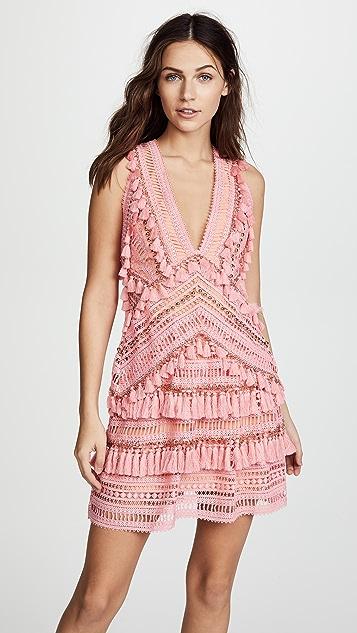 THURLEY Foxtrot Dress
