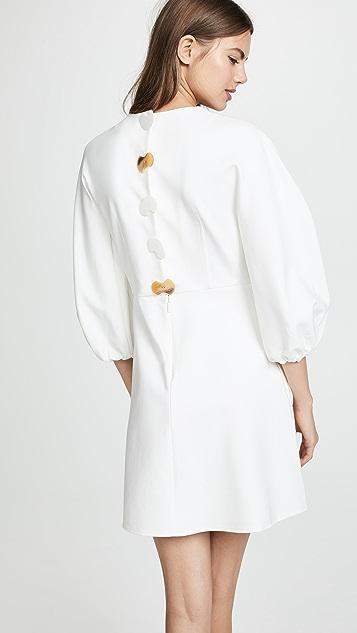 Tibi Sculpted Button Back Dress
