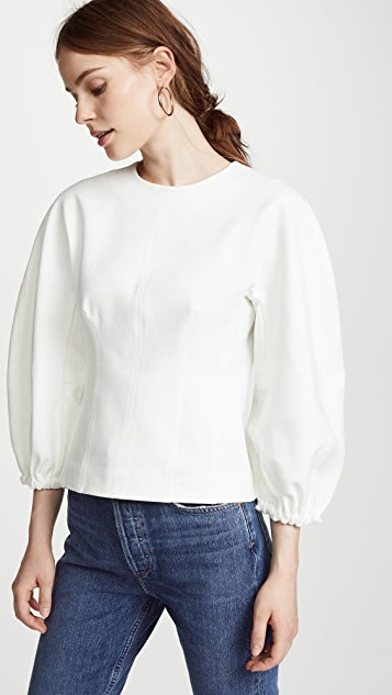 Tibi Balloon Sleeve Corset Top