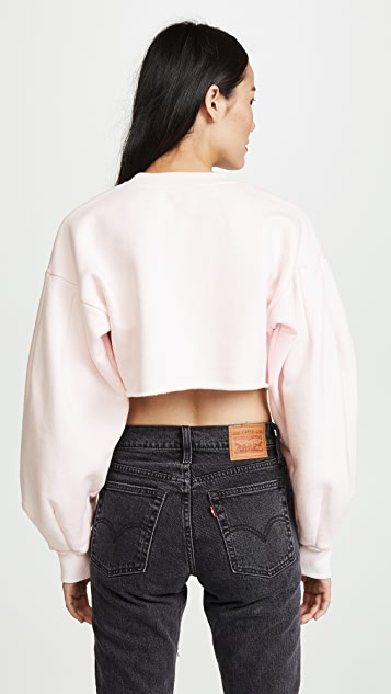 Twenty Tees Pride Terry Puff Sleeve Cropped Sweatshirt