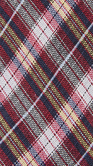 The Tie Bar Plaid Outlook Tie