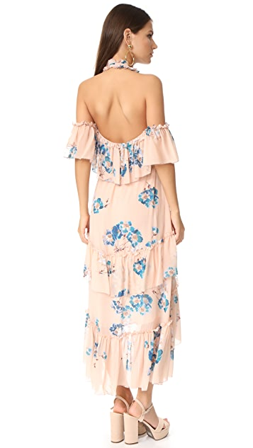 Ulla Johnson Valentine Dress