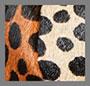 Leopard Patchwork
