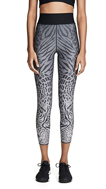 Ultracor Sprinter High Panthera Leggings