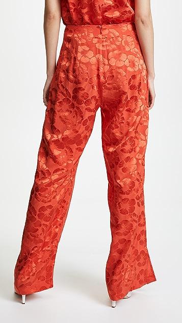 VEDA Reef Pants