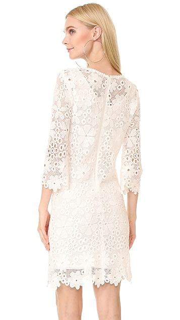Velvet Brenda Dress