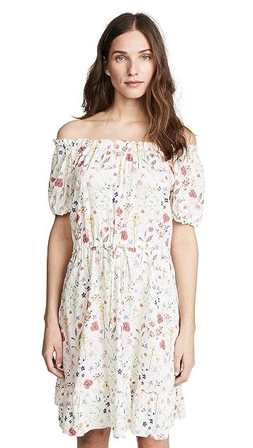Velvet Bayler Dress