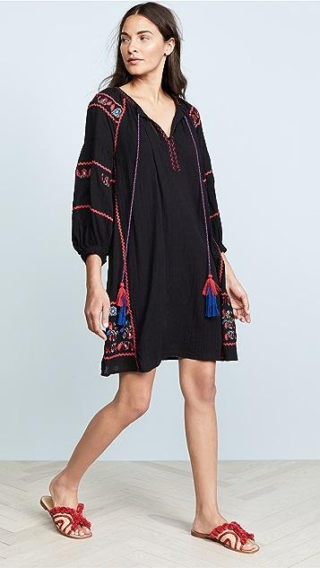 Velvet Embroidered Dress