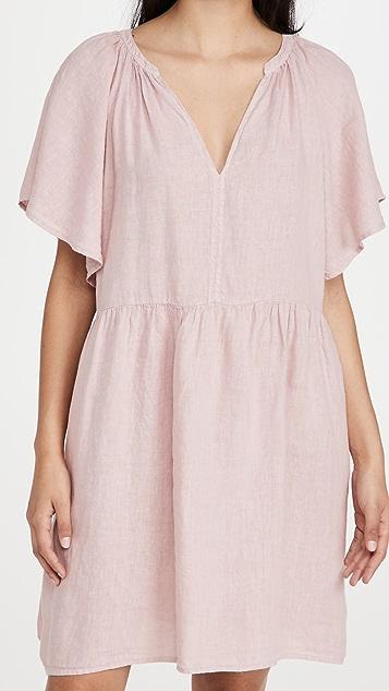 Velvet Danielle Dress