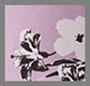 熏衣草紫木槿花色