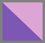Purple Sketch Daisy Floral