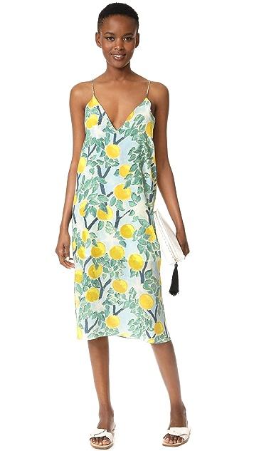 Whit Slip Dress