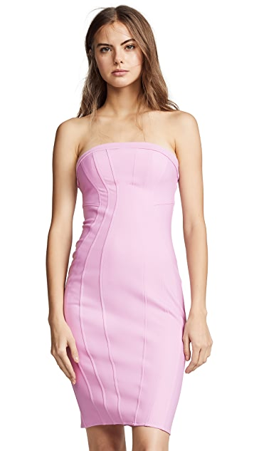 Zac Posen Zac Zac Posen Rhonda Dress