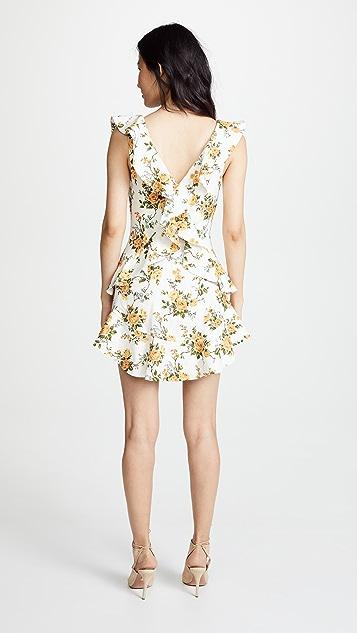 Zimmermann Golden Flutter Dress