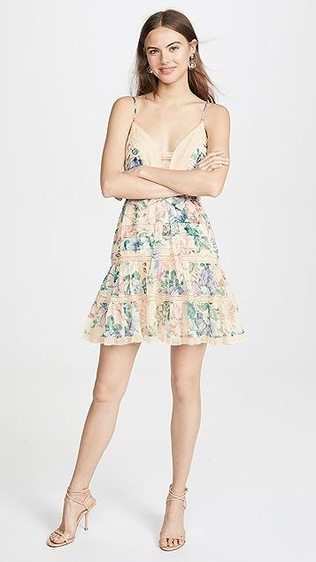 Zimmermann Короткое платье Verity с зубчатой отделкой