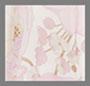粉红罂粟花