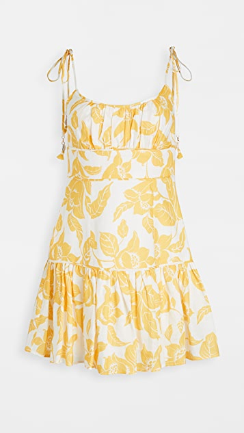 Zimmermann Bells Fit Flare Mini Dress