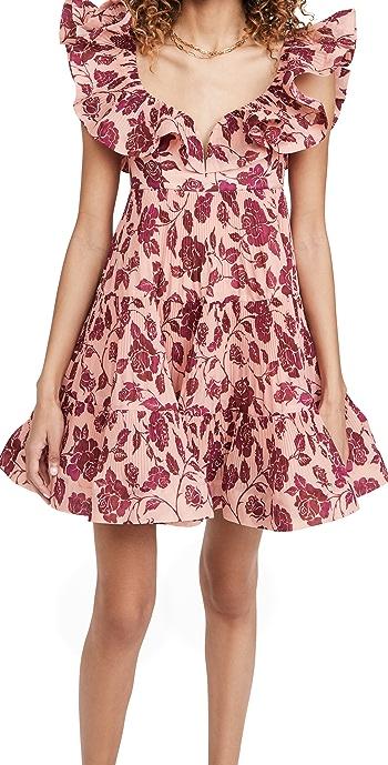Zimmermann The Lovestruck Pleated Mini Dress - Guava/Burgundy Rose