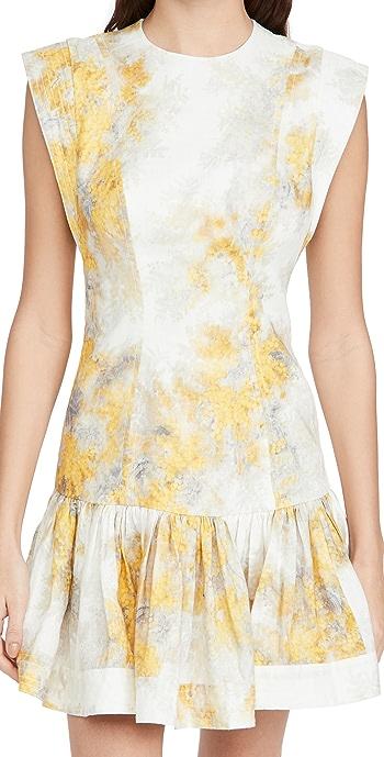 Zimmermann Botanica Flounce Short Dress - Wattle Print