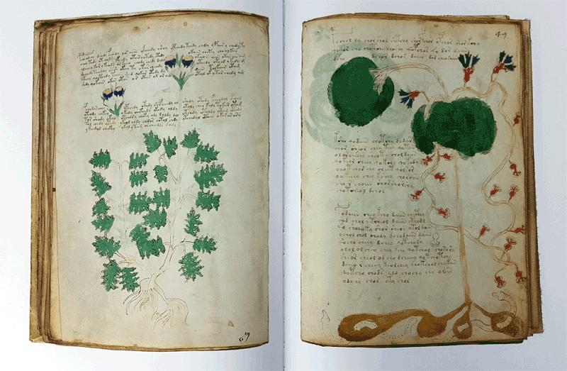 Voynich-inside