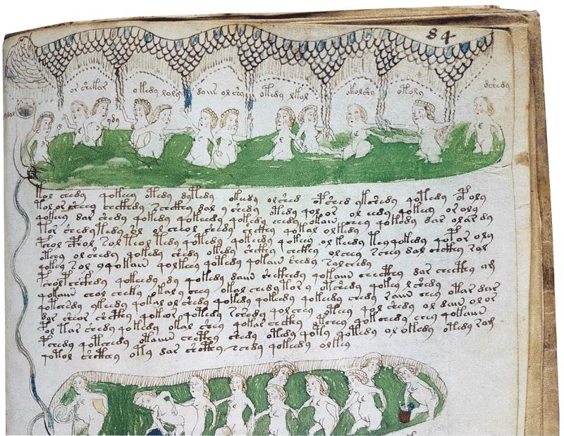 Voynich-women