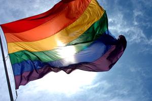 RainbowFlag_300px
