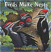 Birds-birds-make-nests