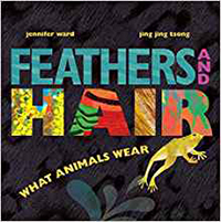 Birds-feathers-hair