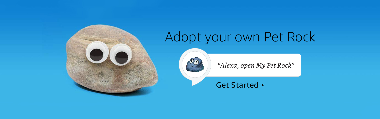 """Alexa, open My Pet Rock."""