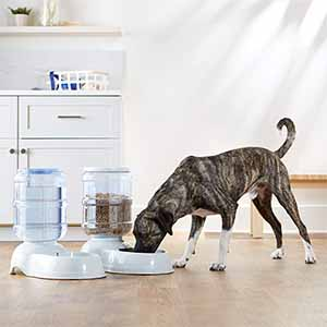 Best-selling automatic gravity feeders from Amazon Basics