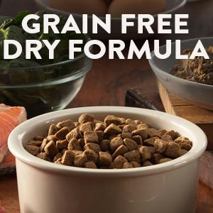 Wellness, Core, dry dog food, protein, protien, grain free, large breed, small breed, puppy