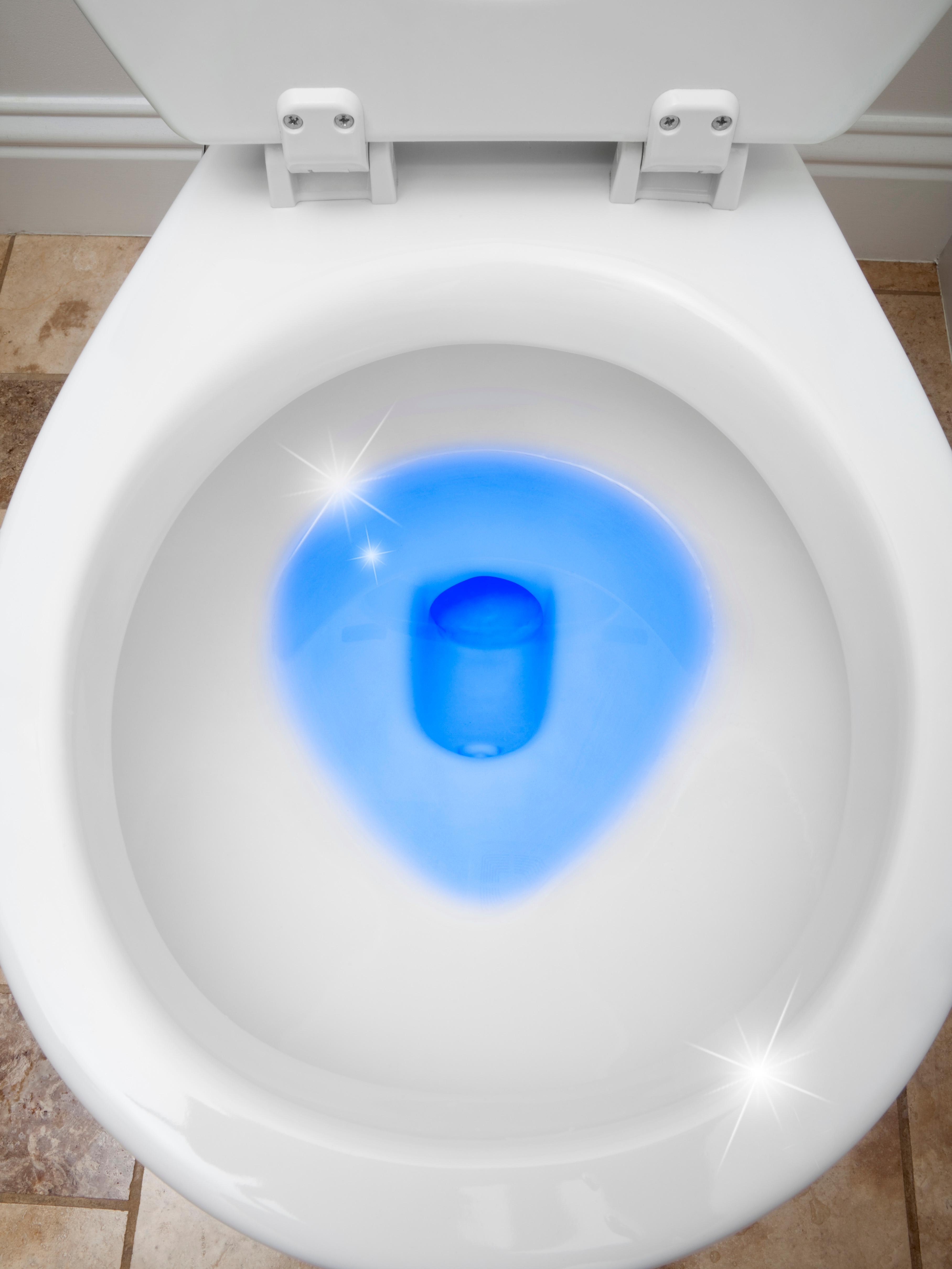 Amazon Com Clorox Automatic Toilet Bowl Cleaner Bleach